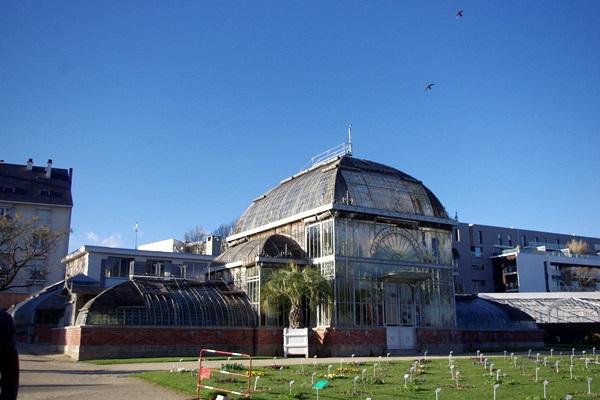 Nantes} Bienvenue au Jardin des plantes - Nantes, etc